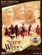 Synové větru