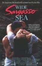 Širé Sargasové moře (Wide Sargasso Sea)