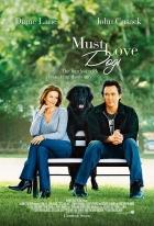 Láska na inzerát (Must Love Dogs)