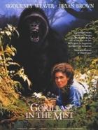 Gorily v mlze (Gorillas in the Mist)