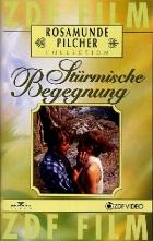 Bouřlivé setkání (Rosamunde Pilcher - Stürmische Begegnung)
