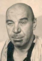 Willi Schur