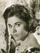 Claudia Gerstäcker
