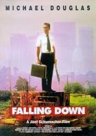 Volný pád (Falling Down)