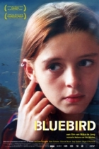 Modrý ptáček (Bluebird)