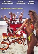 Léto v bikinách (Bikini Summer)