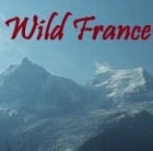 Divoká Francie (Wild France)