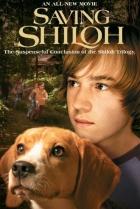 Kámoš 3 (Saving Shiloh)