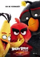 Angry Birds ve filmu (Angry Birds)