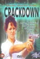 Zátah 1. (L.A. Crackdown)