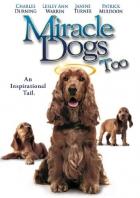 Zázrační pejsci 2 (Miracle Dogs Too)