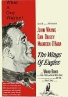 Černý sokol (The Wings of Eagles)