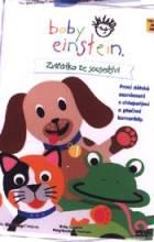 Baby Einstein: Zvířátka ze sousedství (Baby Einstein: Neighborhood Animals)
