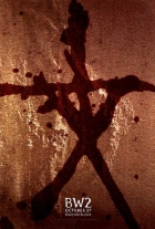 Záhada Blair Witch 2 (Book of Shadows: Blair Witch 2)