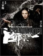 Velmistr (Yi dai zong shi)