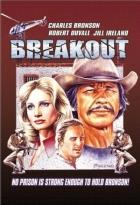 Útěk z vězení (Breakout)