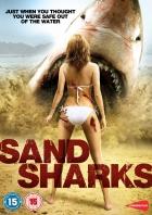 Píseční žraloci (Sand Sharks)