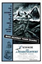 Bojovníci se žraloky