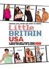 Malá Velká Británie v USA (Little Britain USA)