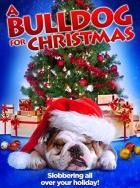 Vánoce pro buldoka (A Bulldog for Christmas)