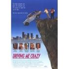 Bláznivá jízda (Driving Me Crazy)