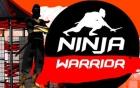 Ninja Faktor (Sasuke)