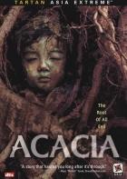 Akát (Acacia)