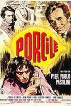 Vepřinec (Porcile)
