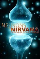 Od neuronů k nirváně