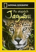Po stopách Jaguára (National Geographic: In Search Of The Jaguar)
