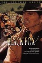 Černý lišák 1 (Black Fox)