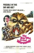 Chlapec, který spatřil vlkodlaka (The Boy Who Cried Werewolf)