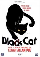 černá kočička dvd