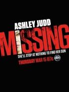 Pohřešovaný (Missing)