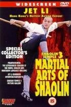Bojová umění Shaolinu (Nan bei Shao Lin)