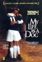 Můj život jako pes (Mitt liv som hund)