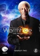 Cestování červí dírou s Morganem Freemanem (Through the Wormhole)