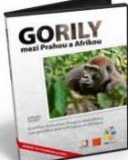 Gorily mezi Prahou a Afrikou