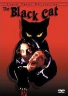 Černá kočka (Il Gatto nero)