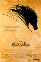 Černý hřebec (The Black Stallion)
