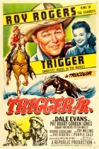 Trigger junior