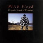 Pink Floyd - Delicate Sound Of Thunder (Pink Floyd Delicate Sound Of Thunder)