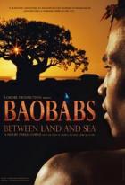 Baobaby mezi zemí a mořem