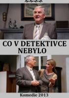 Co v detektivce nebylo