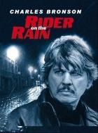 Cestující v dešti (Le Passager de la pluie)