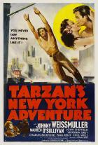 Tarzanovo dobrodružství v New Yorku (Tarzan's New York Adventure)