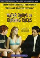 Kapky deště na rozpálených kamenech (Gouttes d'eau sur pierres brulantes)