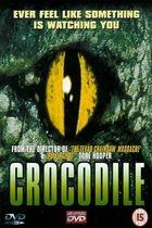 Krokodýl (Crocodile)