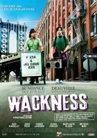 Bláznovství (The Wackness)
