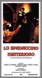 Záhadný rytíř (Lo spadaccino misterioso)